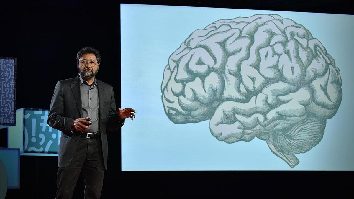 سخنرانی تد : چگونه مغز شما تصمیم میگیرد چه چیزی زیباست