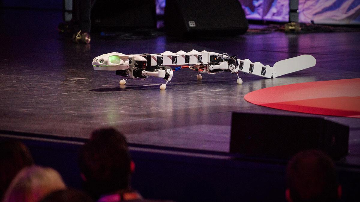 سخنرانی تد : رباتی که میتواند مانند یک سمندربدود وشنا کند