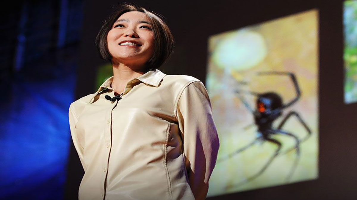 سخنرانی تد : چری هایاشی:عظمت تار عنکبوت