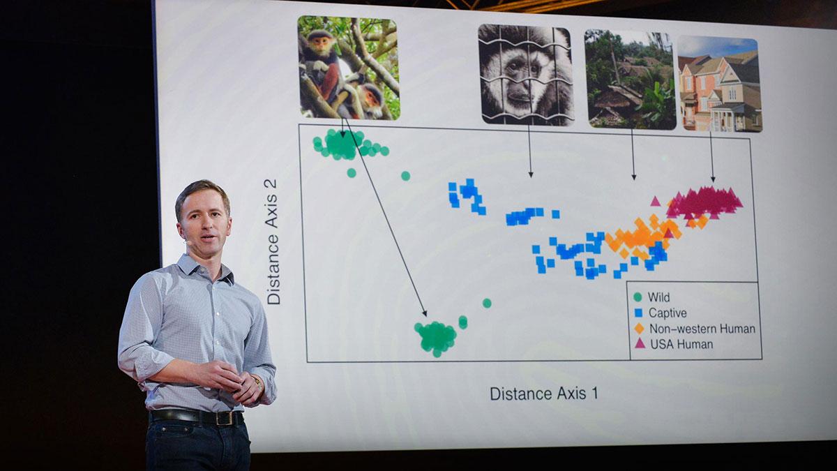 سخنرانی تد : چگونه میکروبهایی که در روده شما زندگی میکنند را مطالعه میکنیم؟