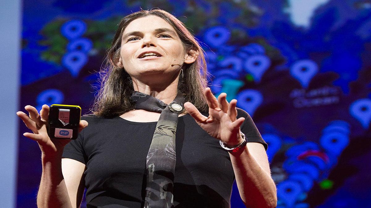 سخنرانی تد : دافنه کولر: از آموزش آنلاین چه میآموزیم