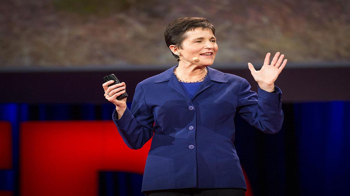 سخنرانی تد : آنچه مورچهها درباره مغز، سرطان و اینترنت به ما میآموزند