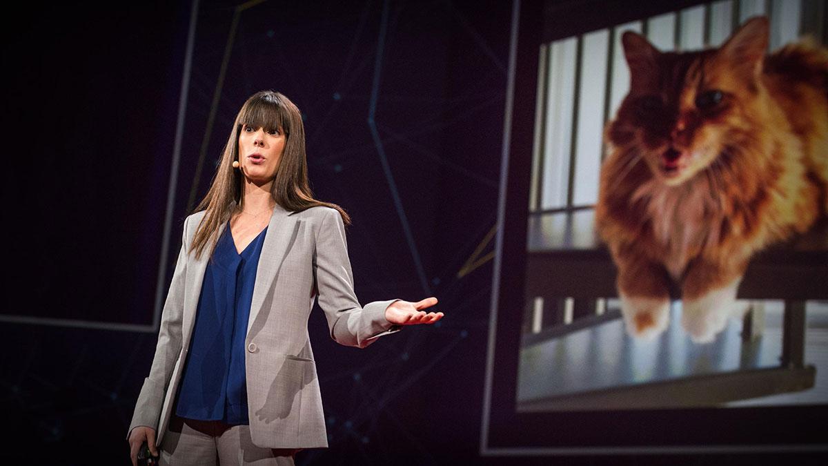 سخنرانی تد : قدرت مقياس در توييتر