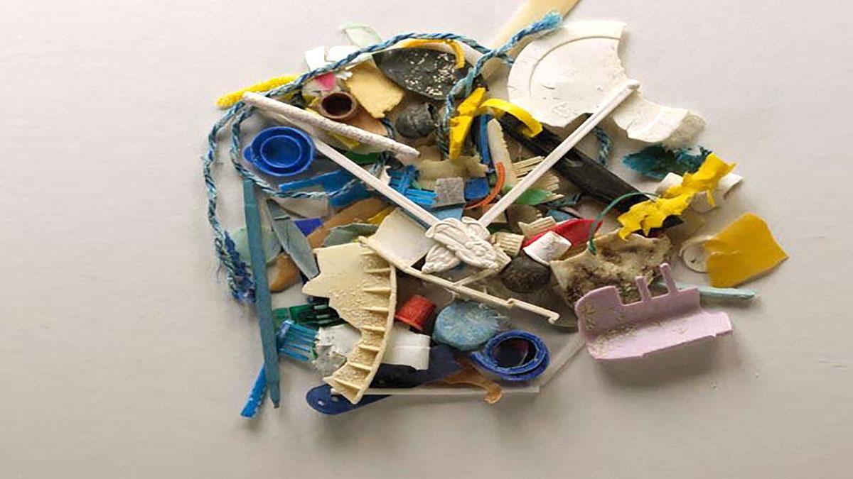 سخنرانی تد : دایانا کوهن: حقیقت تلخی دربارهی آلودگی پلاستیکی