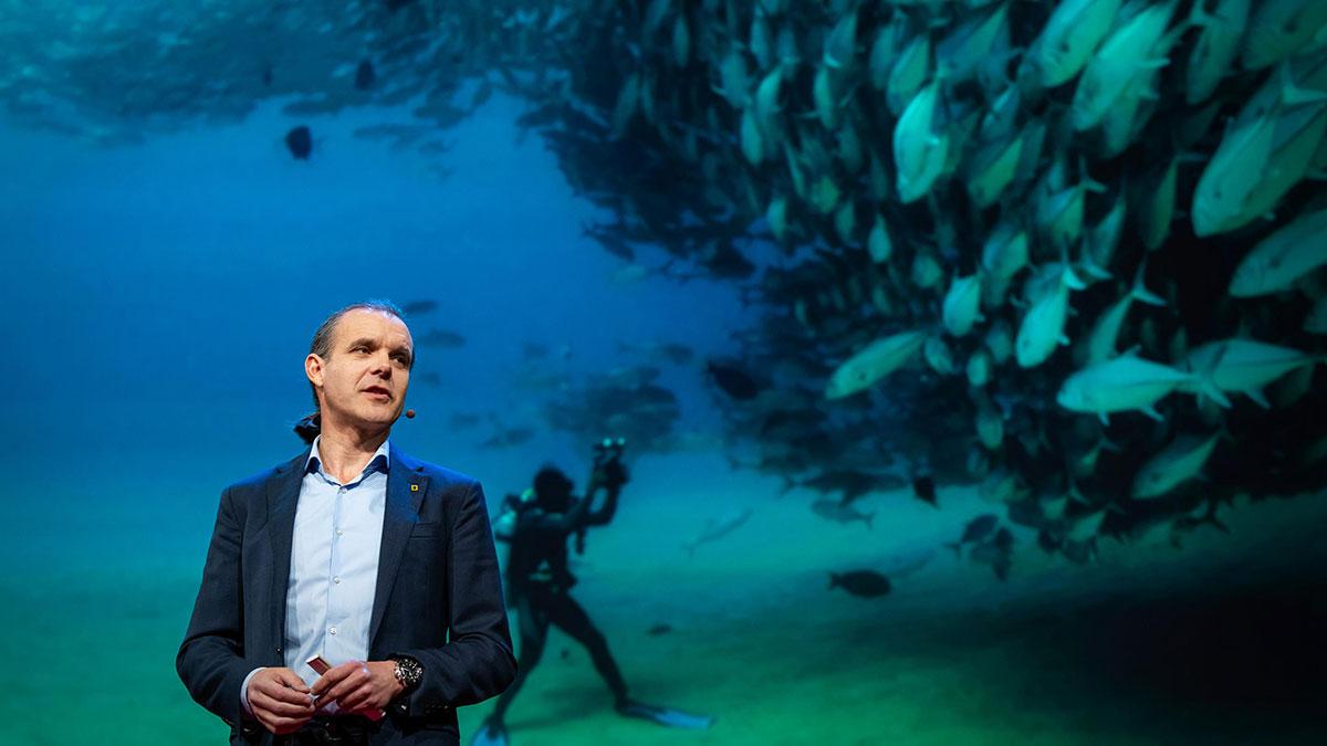 سخنرانی تد : بیایید آبهای آزاد را به بزرگترین ذخایر طبیعی جهان تبدیل کنیم