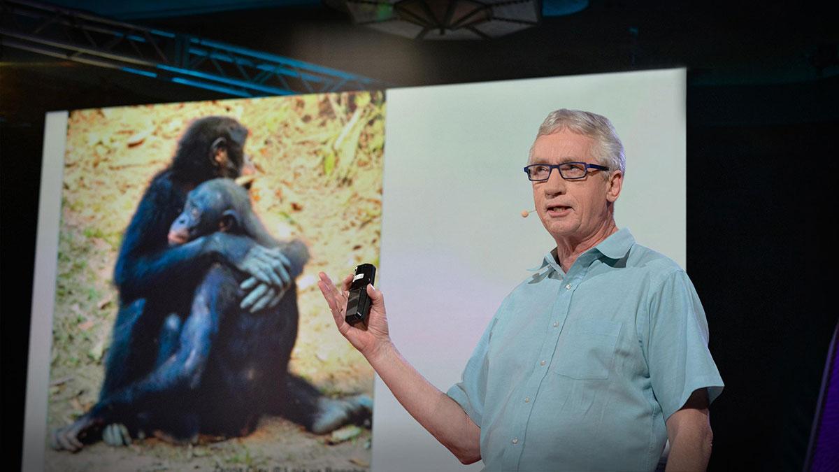 سخنرانی تد : علم شگفتانگیز آلفاهای نر