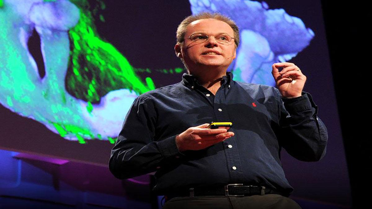 سخنرانی تد : جرو مایسنبوک مغز را بازطراحی می کند.