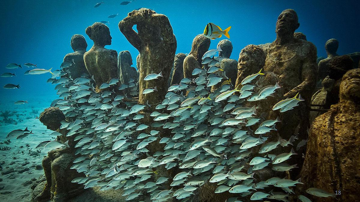 سخنرانی تد : موزه هنر زیر آب: سرشار از حیات