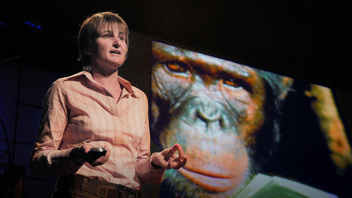 سخنرانی تد : لوییز لیکی در جستجوی اجداد انسانها