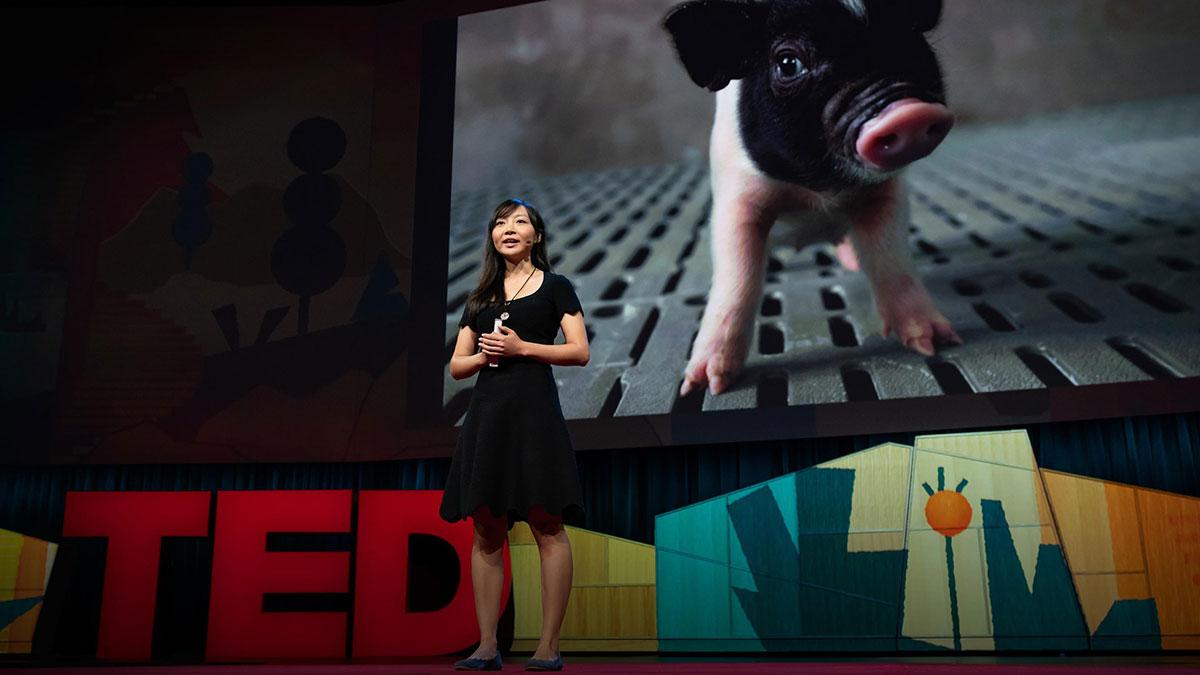 سخنرانی تد : چطور دنیایی خلق کنیم که در آن کسی در انتظار پیوند عضو نمیمیرد