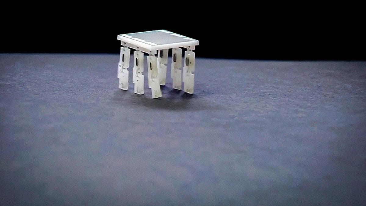 سخنرانی تد : چرا ربات هایی به اندازه یک دانه برنج ساختم