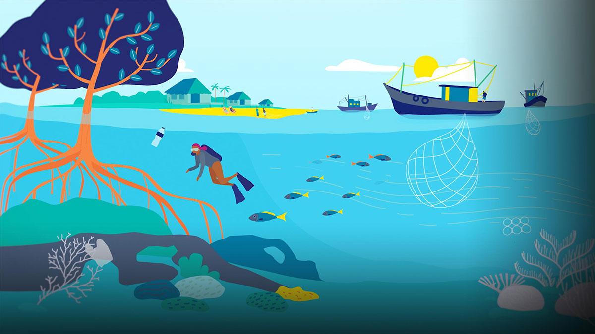 سخنرانی تد : پیشنهادی هوشمندانه برای بهبود حفاظت از مناطق دریایی