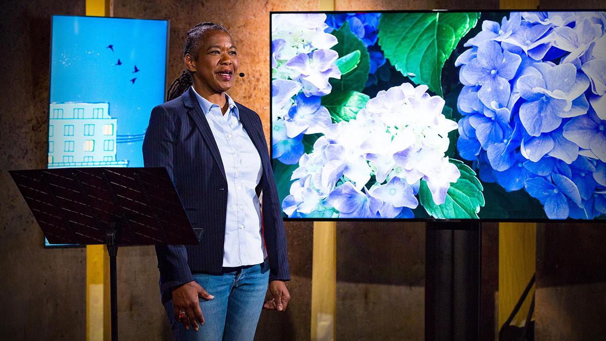 سخنرانی تد : آنچه باغبانی در مورد زندگی به من آموخت